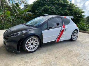 207 s2000 ex Peugeot sport Danemark